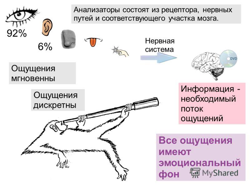 92% 6% Нервная система Ощущения мгновенны Анализаторы состоят из рецептора, нервных путей и соответствующего участка мозга. Информация - необходимый поток ощущений Все ощущения имеют эмоциональный фон Ощущения дискретны