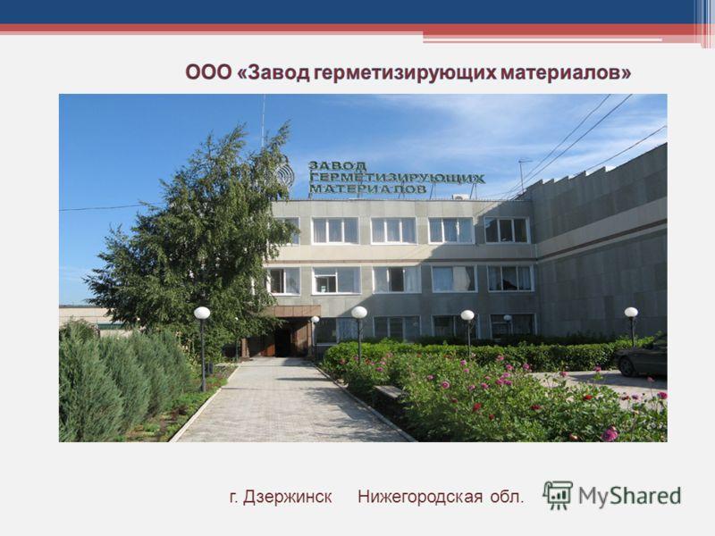 г. Дзержинск Нижегородская обл.