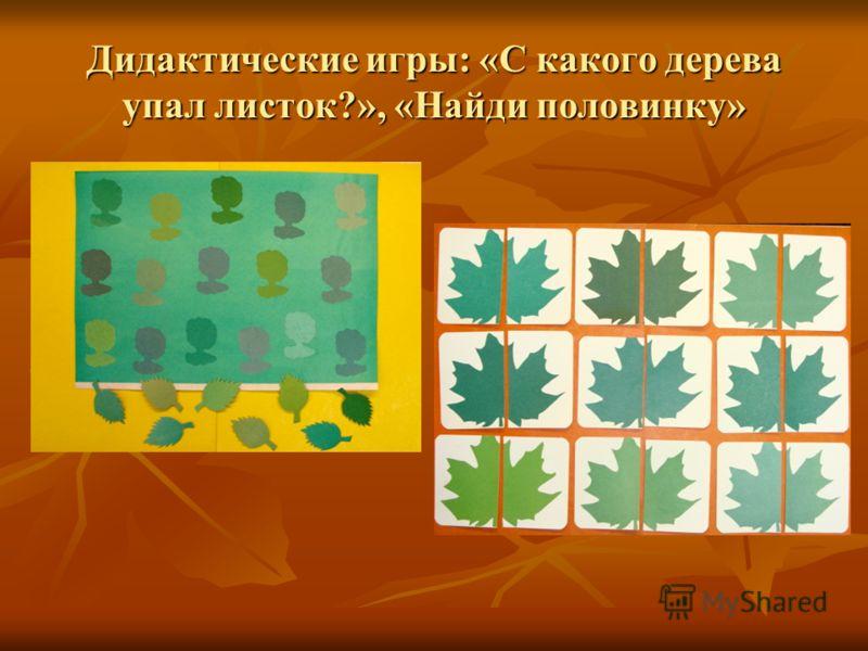 Дидактические игры: «С какого дерева упал листок?», «Найди половинку»