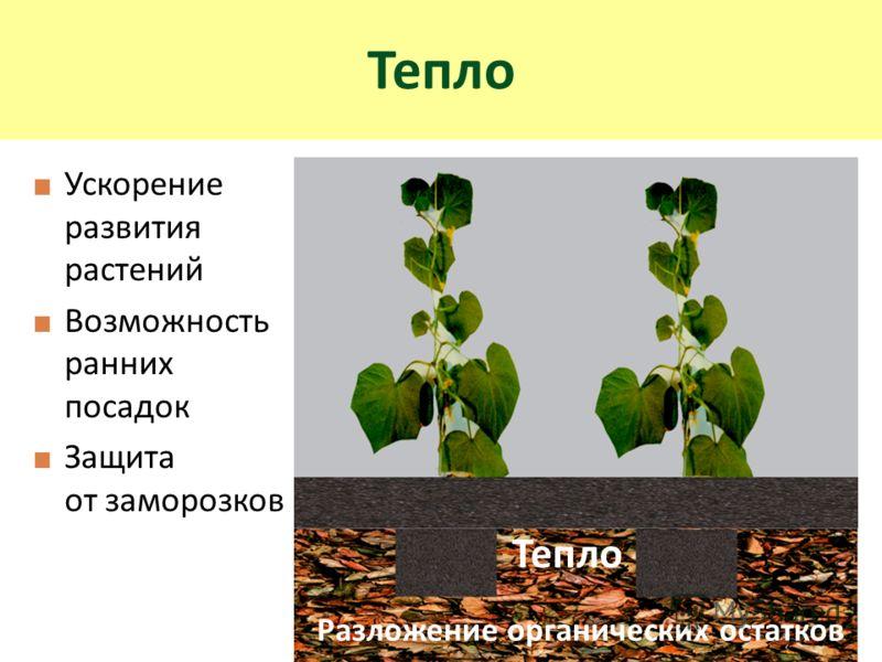 Ускорение развития растений Возможность ранних посадок Защита от заморозков Тепло Разложение органических остатков Тепло