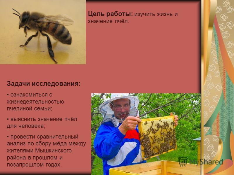 Цель работы: изучить жизнь и значение пчёл. Задачи исследования: ознакомиться с жизнедеятельностью пчелиной семьи; выяснить значение пчёл для человека; провести сравнительный анализ по сбору мёда между жителями Мышкинского района в прошлом и позапрош