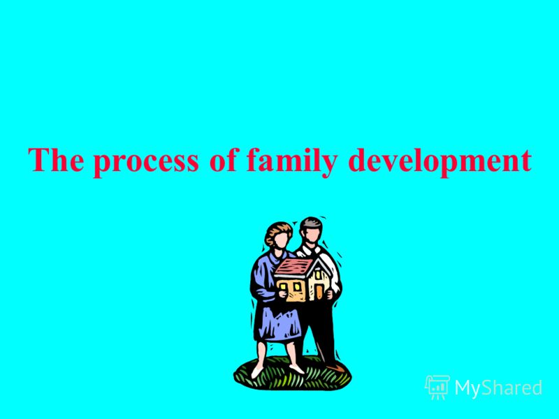 The process of family development