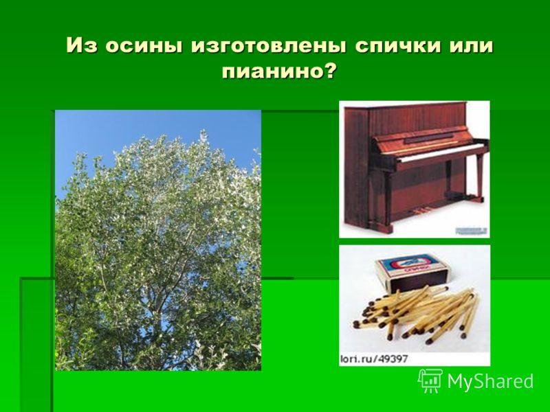 Из осины изготовлены спички или пианино?