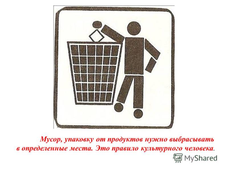 Мусор, упаковку от продуктов нужно выбрасывать в определенные места. Это правило культурного человека.