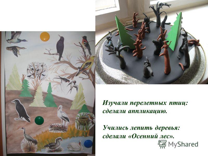 Изучали перелетных птиц: сделали аппликацию. Учились лепить деревья: сделали «Осенний лес».