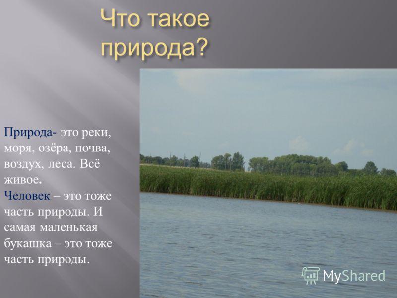 Что такое природа ? Природа - это реки, моря, озёра, почва, воздух, леса. Всё живое. Человек – это тоже часть природы. И самая маленькая букашка – это тоже часть природы.