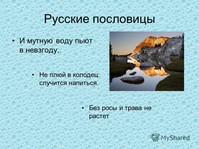 Русские пословицы И мутную воду пьют в невзгоду. Не плюй в колодец: случится напиться. Без росы и трава не растет
