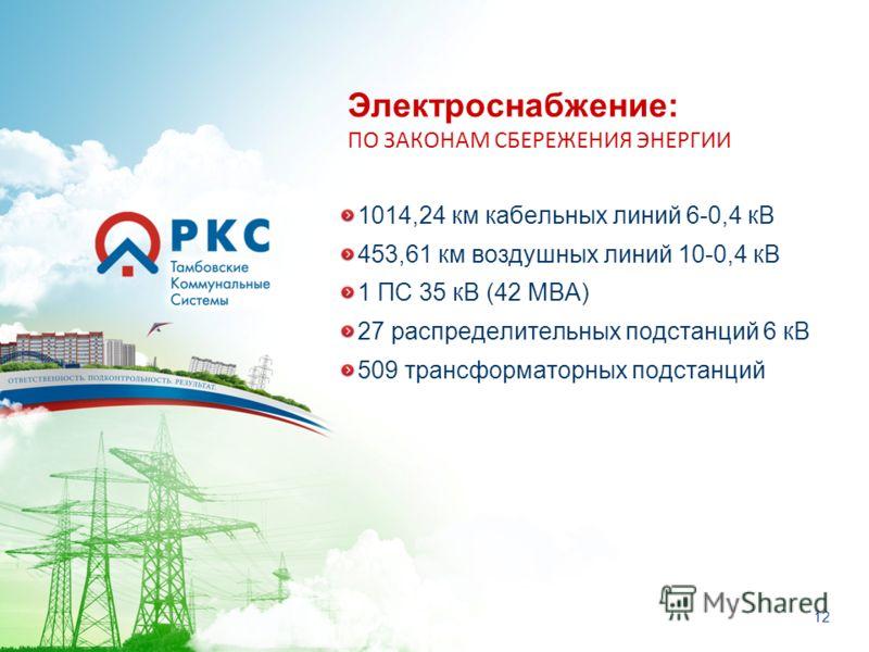 12 Электроснабжение: ПО ЗАКОНАМ СБЕРЕЖЕНИЯ ЭНЕРГИИ 1014,24 км кабельных линий 6-0,4 кВ 453,61 км воздушных линий 10-0,4 кВ 1 ПС 35 кВ (42 МВА) 27 распределительных подстанций 6 кВ 509 трансформаторных подстанций