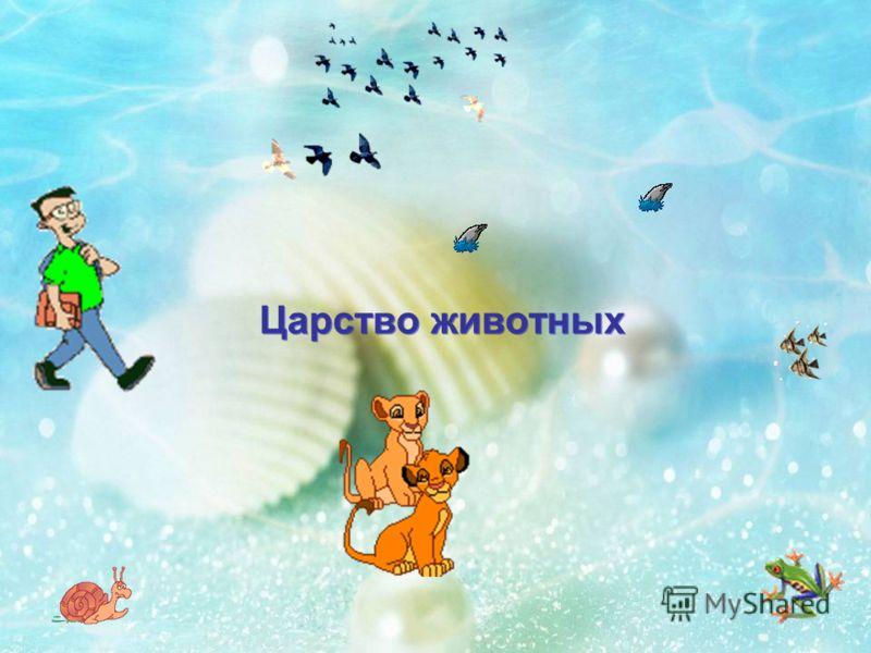 Живая природа Царство растений Царство растений Царство микроорганизмов Царство микроорганизмов Царство грибов Царство грибов Царство животных Царство животных