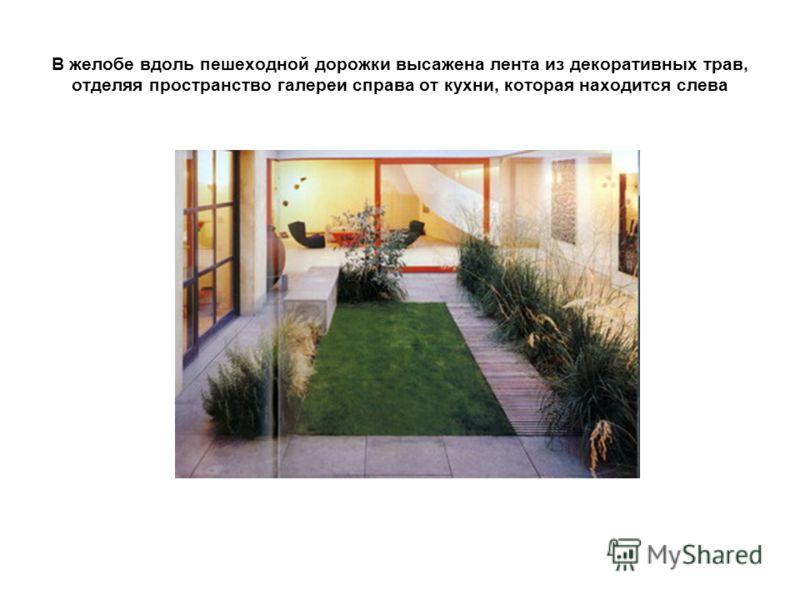 В желобе вдоль пешеходной дорожки высажена лента из декоративных трав, отделяя пространство галереи справа от кухни, которая находится слева