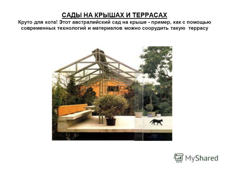 САДЫ НА КРЫШАХ И ТЕРРАСАХ Круто для кота! Этот австралийский сад на крыше - пример, как с помощью современных технологий и материалов можно соорудить такую террасу