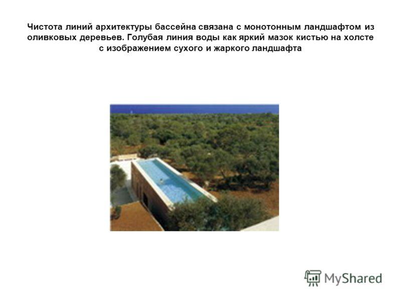 Чистота линий архитектуры бассейна связана с монотонным ландшафтом из оливковых деревьев. Голубая линия воды как яркий мазок кистью на холсте с изображением сухого и жаркого ландшафта