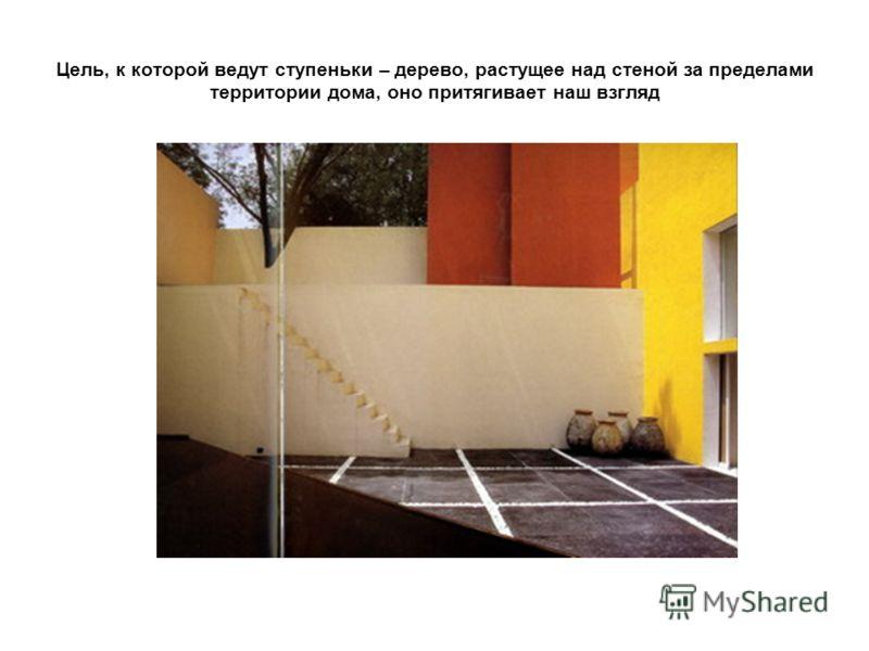 Цель, к которой ведут ступеньки – дерево, растущее над стеной за пределами территории дома, оно притягивает наш взгляд