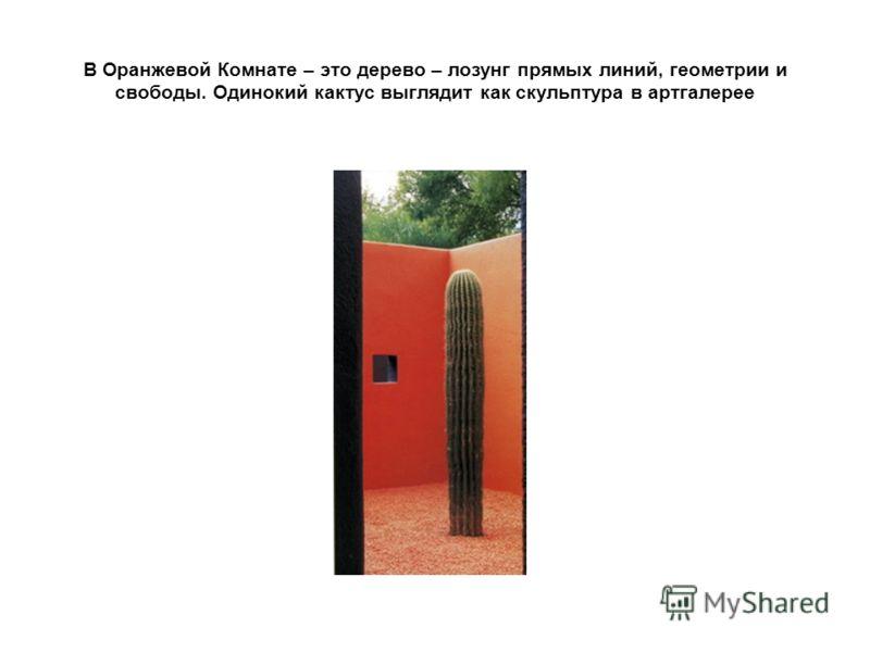 В Оранжевой Комнате – это дерево – лозунг прямых линий, геометрии и свободы. Одинокий кактус выглядит как скульптура в артгалерее