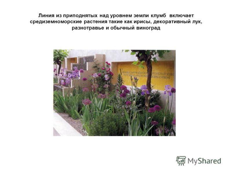 Линия из приподнятых над уровнем земли клумб включает средиземноморские растения такие как ирисы, декоративный лук, разнотравье и обычный виноград