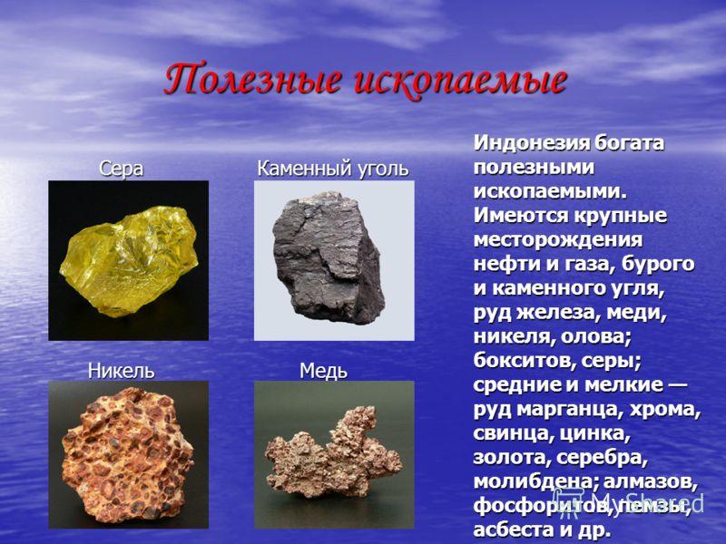 Полезные ископаемые Сера Каменный уголь Сера Каменный уголь Никель Медь Никель Медь Индонезия богата полезными ископаемыми. Имеются крупные месторождения нефти и газа, бурого и каменного угля, руд железа, меди, никеля, олова; бокситов, серы; средние