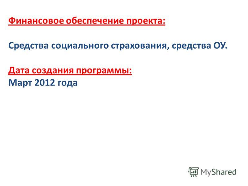 Финансовое обеспечение проекта: Средства социального страхования, средства ОУ. Дата создания программы: Март 2012 года