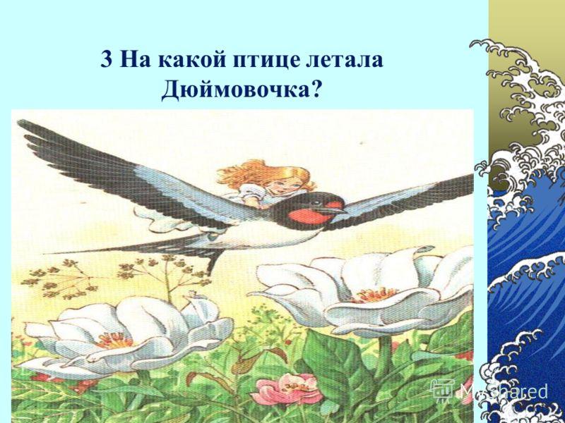 3 На какой птице летала Дюймовочка?