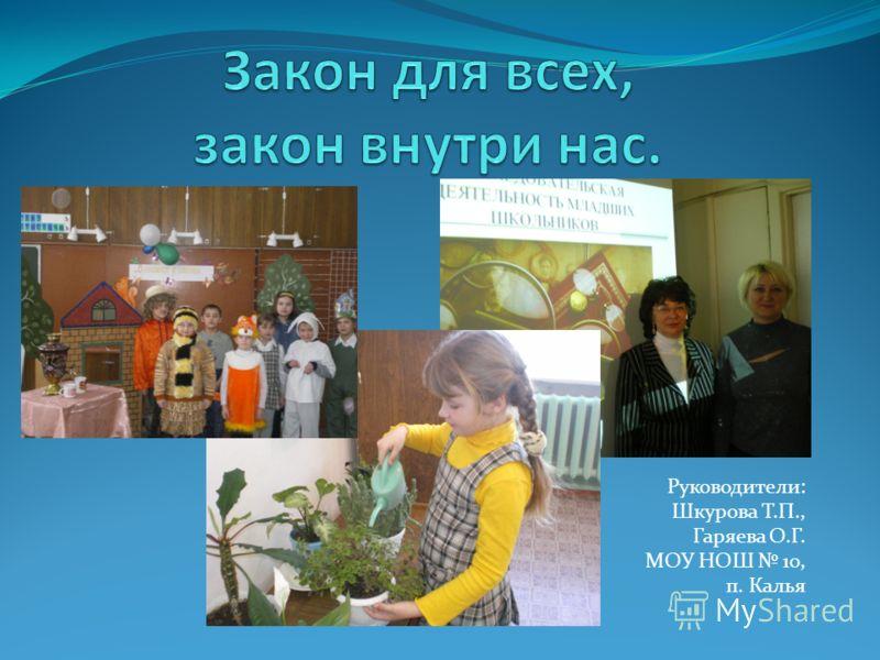 Руководители: Шкурова Т.П., Гаряева О.Г. МОУ НОШ 10, п. Калья