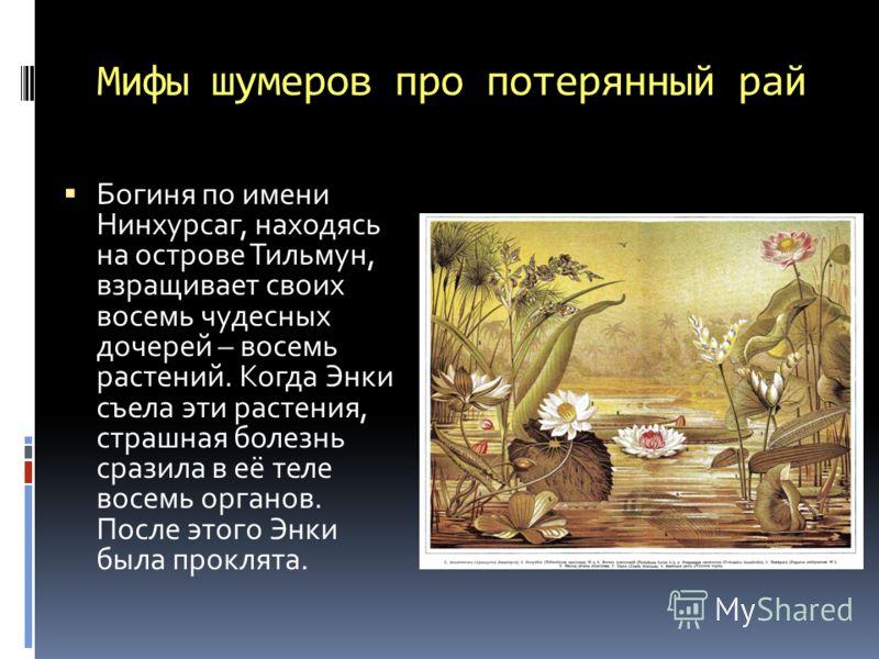 Мифы шумеров про потерянный рай Богиня по имени Нинхурсаг, находясь на острове Тильмун, взращивает своих восемь чудесных дочерей – восемь рaстений. Когда Энки съела эти растения, страшная болезнь сразила в её теле восемь органов. После этого Энки был