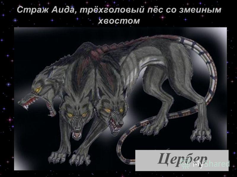 Страж Аида, трёхголовый пёс со змеиным хвостом Цербер