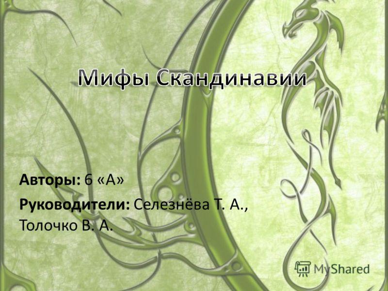 Авторы: 6 «А» Руководители: Селезнёва Т. А., Толочко В. А.