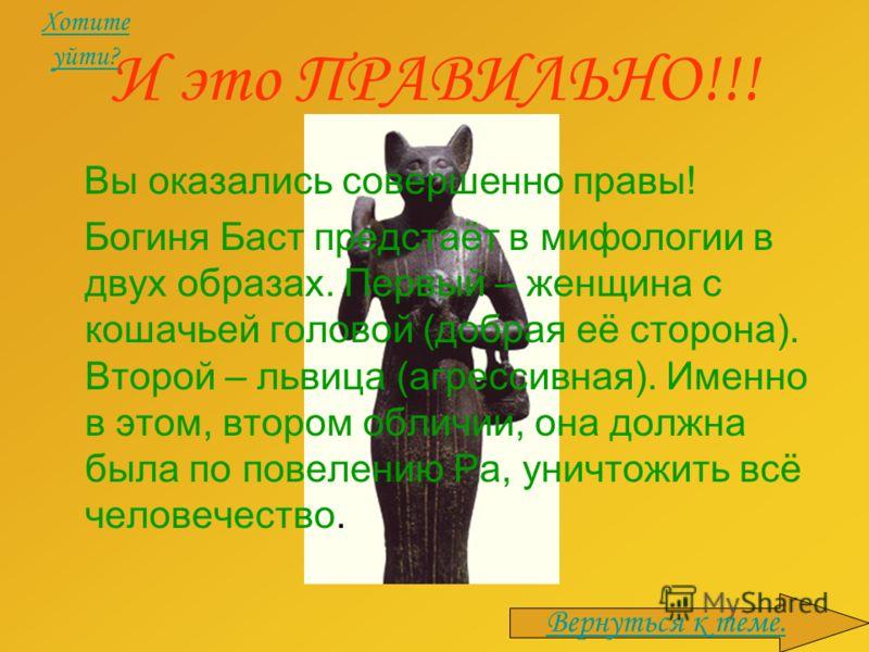 И это ПРАВИЛЬНО!!! Вы оказались совершенно правы! Богиня Баст предстаёт в мифологии в двух образах. Первый – женщина с кошачьей головой (добрая её сторона). Второй – львица (агрессивная). Именно в этом, втором обличии, она должна была по повелению Ра