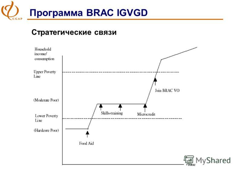 Программа BRAC IGVGD Стратегические связи