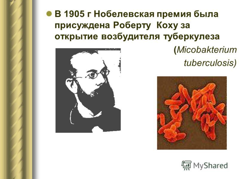 В 1905 г Нобелевская премия была присуждена Роберту Коху за открытие возбудителя туберкулеза (Micobakterium tuberculosis)