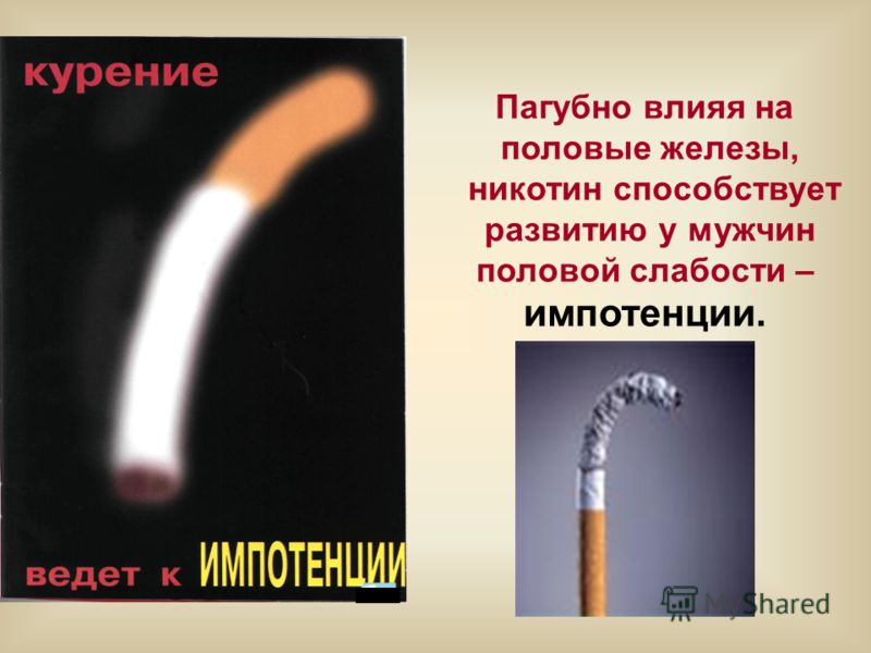 Пагубно влияя на половые железы, никотин способствует развитию у мужчин половой слабости – импотенции.