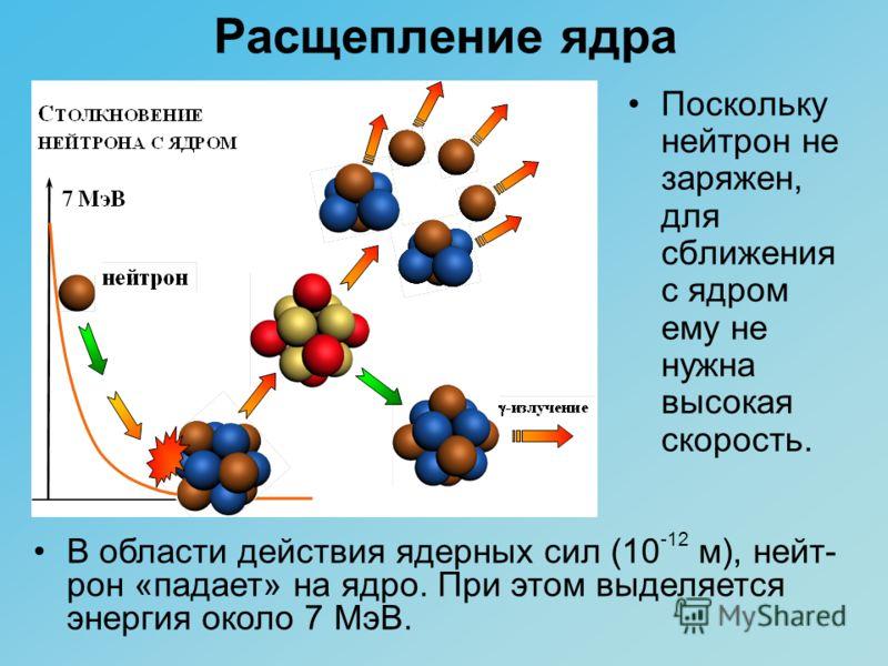 Расщепление ядра Поскольку нейтрон не заряжен, для сближения с ядром ему не нужна высокая скорость. В области действия ядерных сил (10 -12 м), нейт- рон «падает» на ядро. При этом выделяется энергия около 7 МэВ.