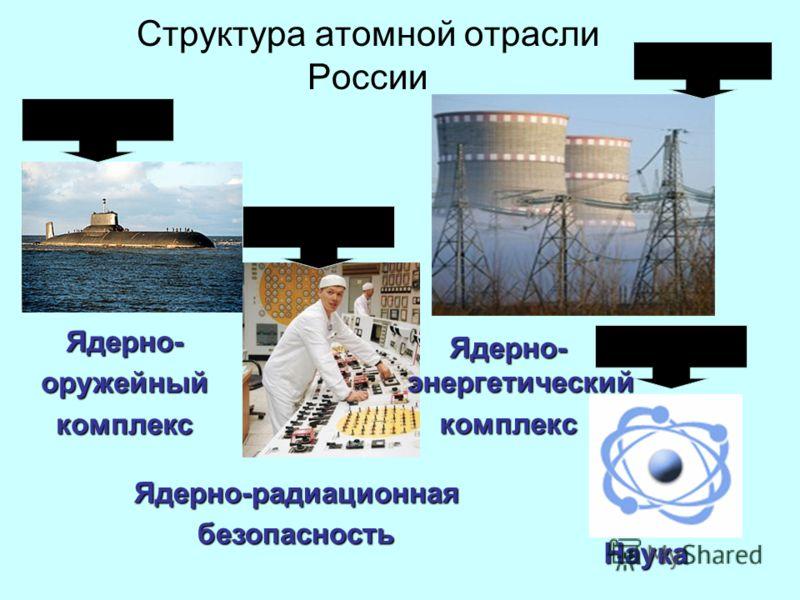 Структура атомной отрасли России Ядерно- энергетический комплекс Ядерно-оружейныйкомплекс Ядерно-радиационнаябезопасность Наука