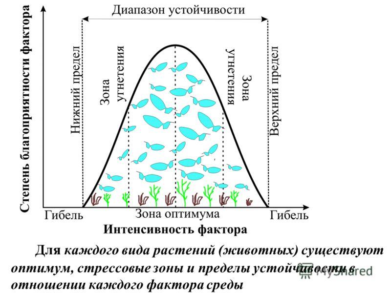 Для каждого вида растений (животных) существуют оптимум, стрессовые зоны и пределы устойчивости в отношении каждого фактора среды