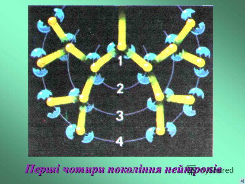 Перші чотири покоління нейтронів