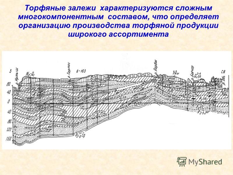 Торфяные залежи характеризуются сложным многокомпонентным составом, что определяет организацию производства торфяной продукции широкого ассортимента
