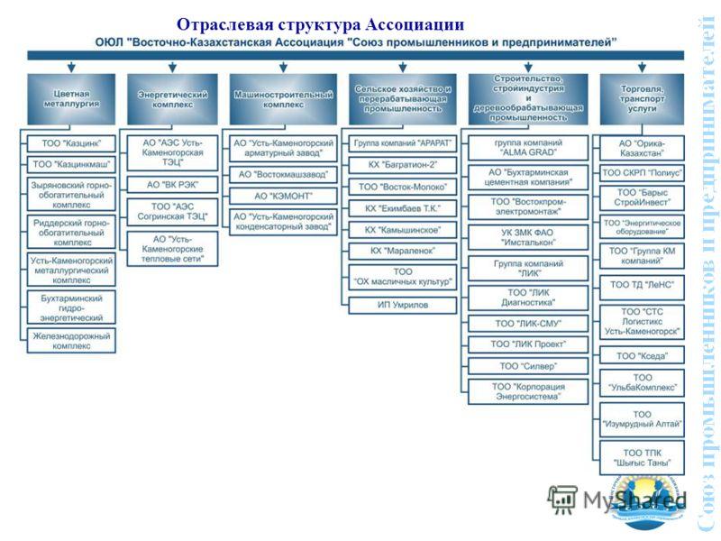 Отраслевая структура Ассоциации