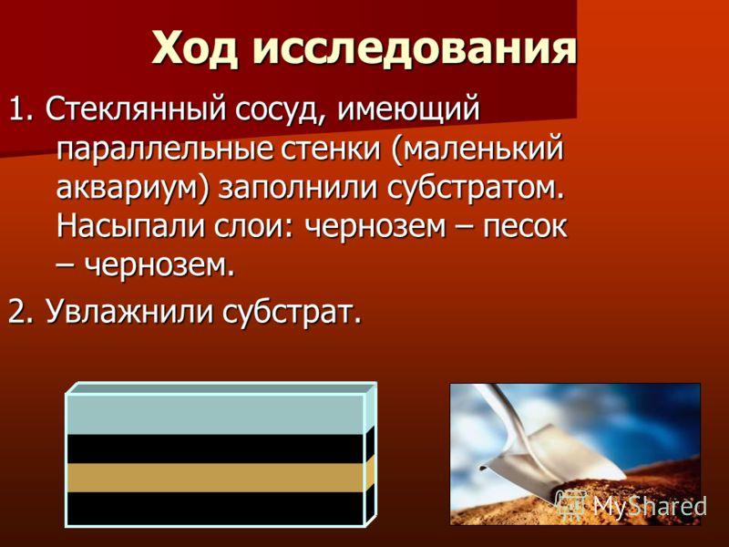 Ход исследования 1. Стеклянный сосуд, имеющий параллельные стенки (маленький аквариум) заполнили субстратом. Насыпали слои: чернозем – песок – чернозем. 2. Увлажнили субстрат.