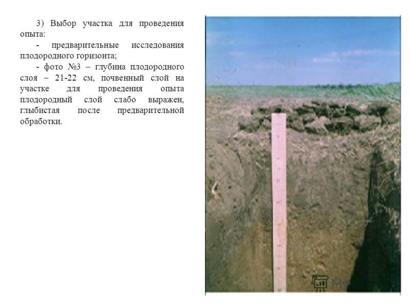 3) Выбор участка для проведения опыта: - предварительные исследования плодородного горизонта; - фото 3 – глубина плодородного слоя – 21-22 см, почвенный слой на участке для проведения опыта плодородный слой слабо выражен, глыбистая после предваритель