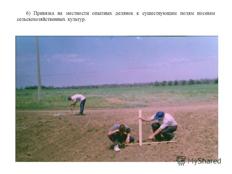 6) Привязка на местности опытных делянок к существующим полям посевам сельскохозяйственных культур.