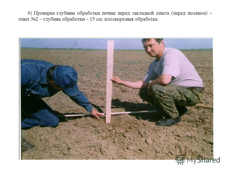 9) Проверка глубины обработки почвы перед закладкой опыта (перед посевом) – опыт 2 – глубина обработки – 15 см; плоскорезная обработка.