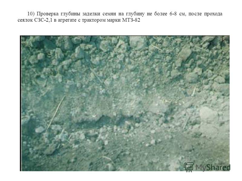 10) Проверка глубины заделки семян на глубину не более 6-8 см, после прохода сеялок СЗС-2,1 в агрегате с трактором марки МТЗ-82