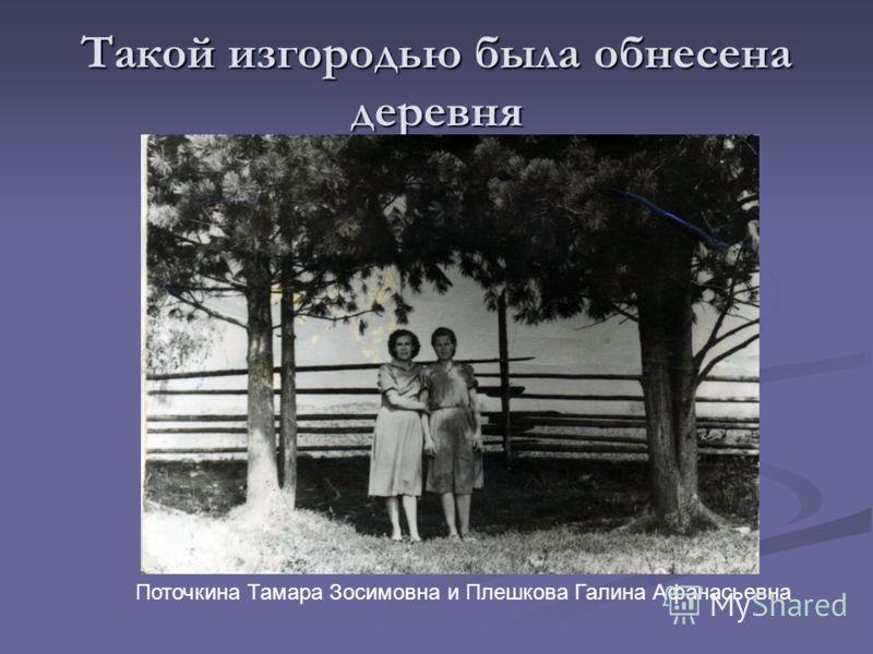 Такой изгородью была обнесена деревня Поточкина Тамара Зосимовна и Плешкова Галина Афанасьевна