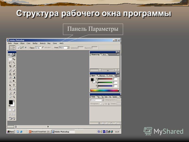 Структура рабочего окна программы Панель Параметры