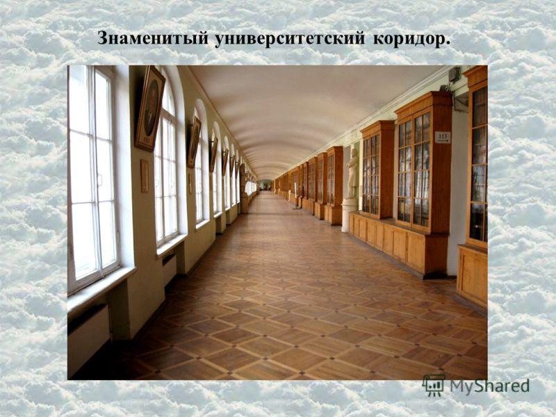 Знаменитый университетский коридор.