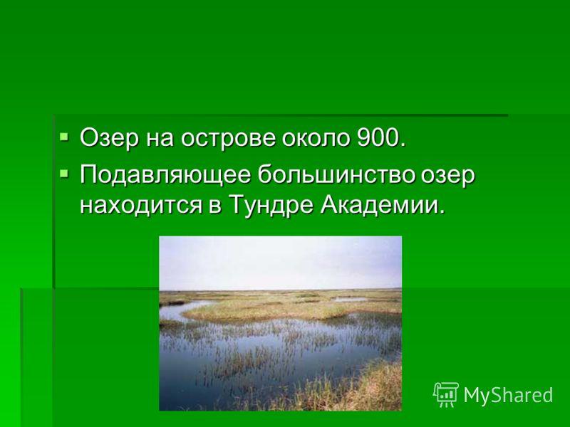Озер на острове около 900. Озер на острове около 900. Подавляющее большинство озер находится в Тундре Академии. Подавляющее большинство озер находится в Тундре Академии.