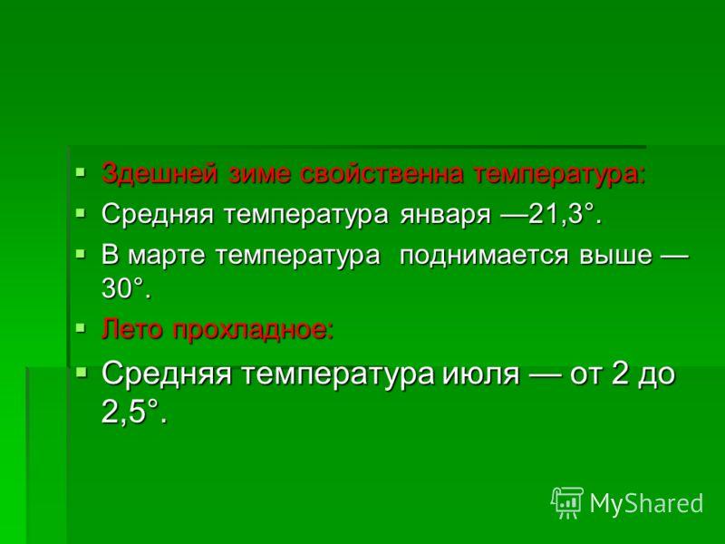 Здешней зиме свойственна температура: Здешней зиме свойственна температура: Средняя температура января 21,3°. Средняя температура января 21,3°. В марте температура поднимается выше 30°. В марте температура поднимается выше 30°. Лето прохладное: Лето