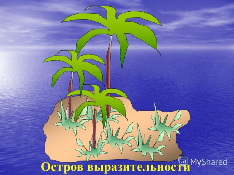 Остров выразительности