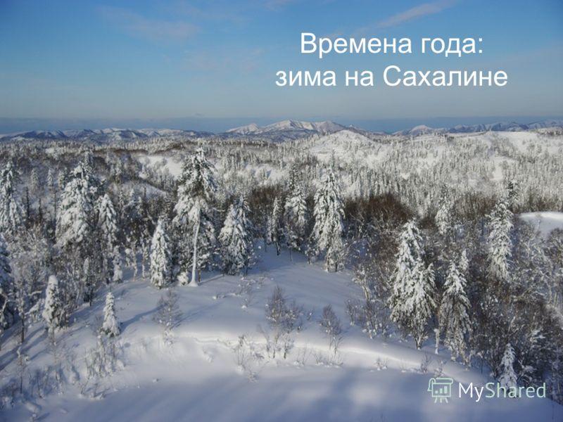 Времена года: зима на Сахалине