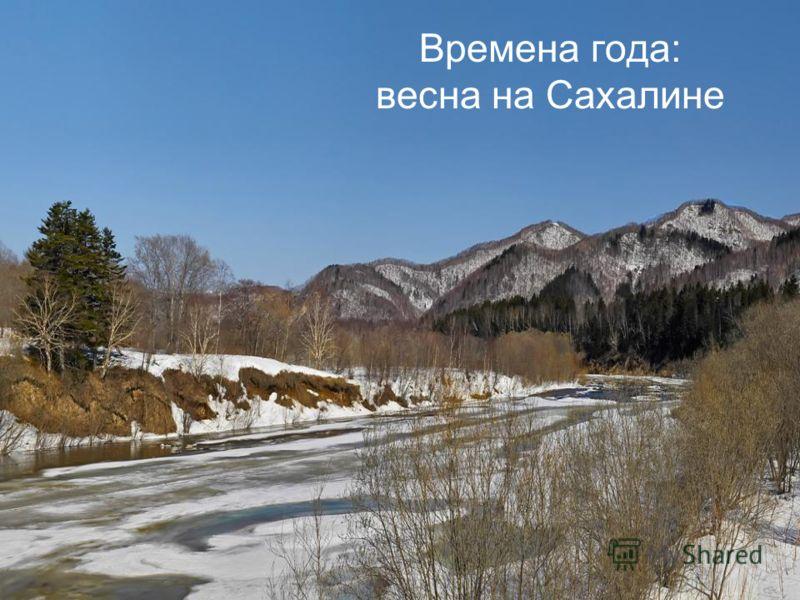 Времена года: весна на Сахалине