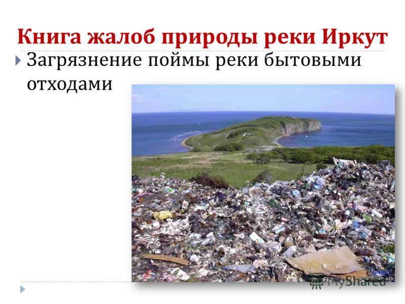 Книга жалоб природы реки Иркут Загрязнение поймы реки бытовыми отходами